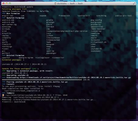 Screenshot of update script for Homebrew
